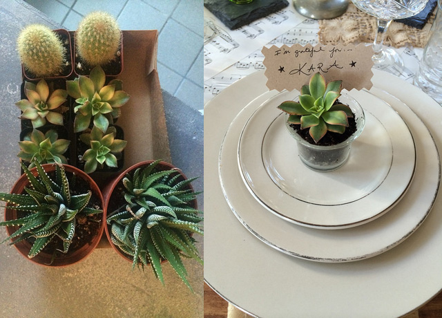 goodwill thanksgiving succulent tablemarkers
