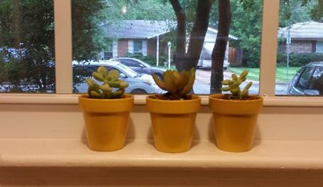 flowre pots on window sill